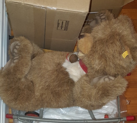 steiff bear w:boxes 2