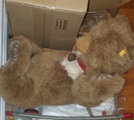 steiff bear w:boxes 2