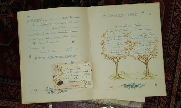baby book family tree